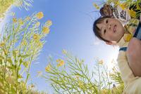 菜の花畑で覗き込む女の子
