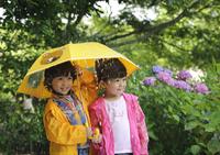 傘をさす子どもとあじさい