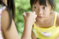 蝶を見る女の子