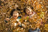 落ち葉に寝転ぶ男の子と女の子