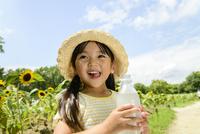 ヒマワリ畑でペットボトルの飲料を飲む女の子