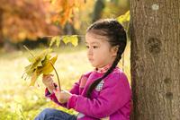 木にもたれて落ち葉で遊ぶ女の子