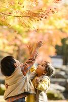 紅葉の公園でモミジの葉を触る男の子女の子 10264007283| 写真素材・ストックフォト・画像・イラスト素材|アマナイメージズ