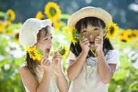 向日葵畑で遊ぶ2人の女の子 10264007565| 写真素材・ストックフォト・画像・イラスト素材|アマナイメージズ