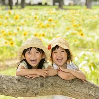 ひまわり畑で笑う帽子をかぶった女の子 10264007764| 写真素材・ストックフォト・画像・イラスト素材|アマナイメージズ
