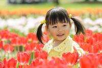春の公園でチューリップ畑で遊ぶ女の子 10264007858| 写真素材・ストックフォト・画像・イラスト素材|アマナイメージズ