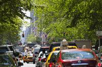 新緑と渋滞の五番街