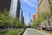 ダウンタウン新緑と立ち並ぶビルとフリーダムタワー