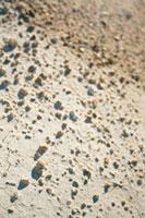 砂の上の石ころ