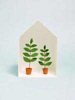 家の中の植物 10268000349| 写真素材・ストックフォト・画像・イラスト素材|アマナイメージズ