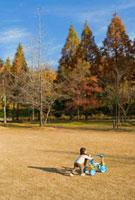 公園で三輪車を押す日本人の男の子 10272000480| 写真素材・ストックフォト・画像・イラスト素材|アマナイメージズ