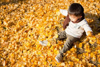 落ち葉で遊ぶ日本人の男の子 10272000483| 写真素材・ストックフォト・画像・イラスト素材|アマナイメージズ