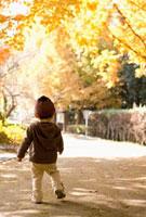紅葉の公園を歩く日本人男の子の後姿 10272000484| 写真素材・ストックフォト・画像・イラスト素材|アマナイメージズ