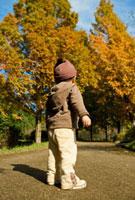 紅葉の公園に立つ日本人男の子の後姿 10272000486| 写真素材・ストックフォト・画像・イラスト素材|アマナイメージズ