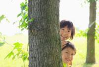 木から顔をのぞかせる姉と弟 10272000729| 写真素材・ストックフォト・画像・イラスト素材|アマナイメージズ