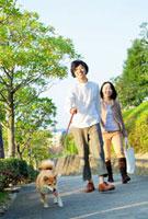 犬の散歩をする日本人カップル