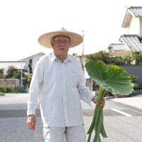 麦わら帽子をかぶり緑の葉を持った日本人シニア