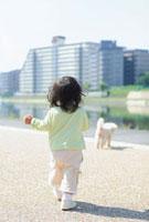 犬を追いかける女の子の後姿 10272001519| 写真素材・ストックフォト・画像・イラスト素材|アマナイメージズ