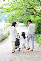 べビーカーを押しながら並木道を歩く日本人家族