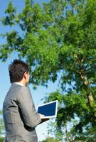 木の前に立ちパソコンをする日本人ビジネスマン