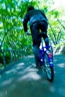 新緑の中を自転車で走るビジネスマンの後ろ姿