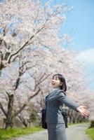 桜並木で両手を広げる日本人ビジネスウーマン 10272002376  写真素材・ストックフォト・画像・イラスト素材 アマナイメージズ