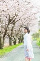 桜並木と振り向いて歩く日本人女性
