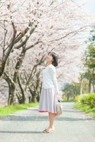 桜並木の下で立つ日本人女性