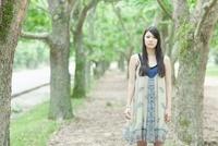 並木道に立つ日本人女性 10272002557  写真素材・ストックフォト・画像・イラスト素材 アマナイメージズ