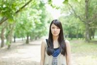 新緑の並木に立つ日本人女性