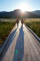 夕暮れの湿原を歩く日本人女性の後ろ姿