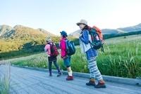 湿原を歩く3人の日本人女性 10272002758| 写真素材・ストックフォト・画像・イラスト素材|アマナイメージズ