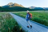 リュックを背負い湿原を歩く日本人女性