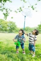 虫取りをして遊ぶ日本人兄弟
