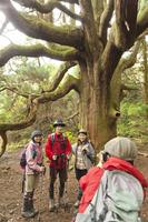 森林の中で写真撮影をする男女 10272004310  写真素材・ストックフォト・画像・イラスト素材 アマナイメージズ