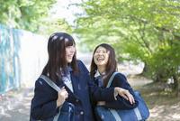 新緑の並木道で笑う2人の女子高生
