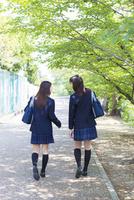 新緑の並木道を歩く2人の女子高生