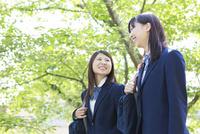 新緑の下で笑う2人の女子高生