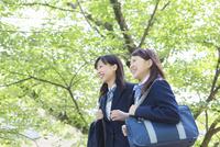 新緑の並木を歩く2人の女子高生