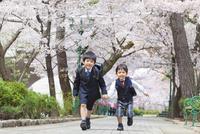 桜並木を走る兄弟
