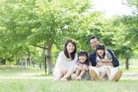 新緑の公園に座る日本人家族