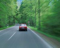 森を走り抜ける車