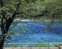 九寨溝の五彩池