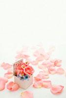 バラの小箱と花びら