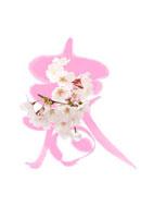 桜の花と春の文字