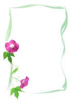 朝顔の花と蔓のフレーム