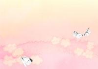 花畑の紋白蝶