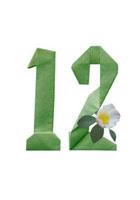 山茶花と数字12の折り紙