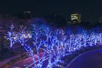 東京ミッドタウンのイルミネーション 10309000956  写真素材・ストックフォト・画像・イラスト素材 アマナイメージズ