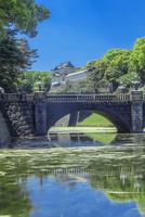 新緑の皇居二重橋 10309001107| 写真素材・ストックフォト・画像・イラスト素材|アマナイメージズ